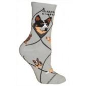 Australian Cattle Dog Sock on Gray Size 9-11