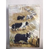 Border Collie Cards