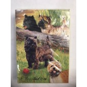 Carin Terrier Cards